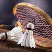 Licence badminton